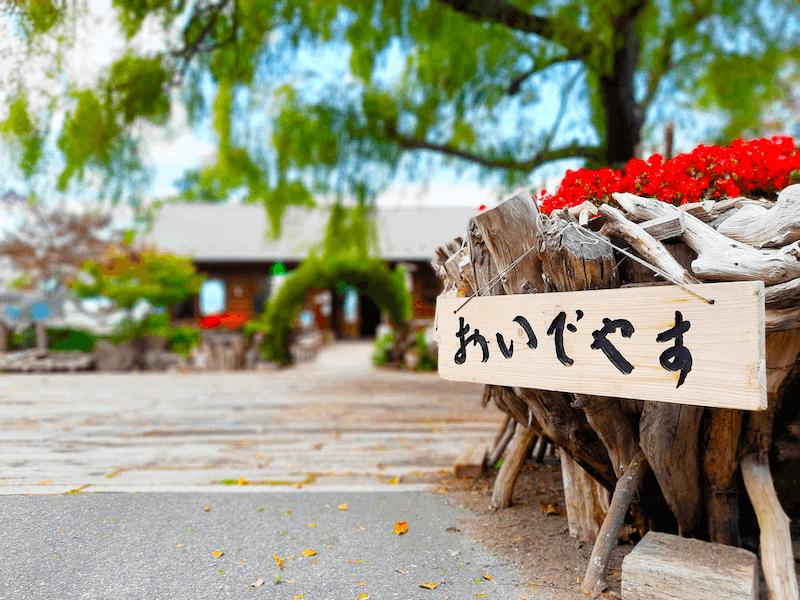 滋賀県-カフェ-琵琶湖-周辺-景色-湖岸-シャーレ水ヶ浜-cafe-chalet-看板-流木