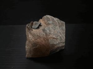 アクアリウム-水草水槽-流木石組レイアウト-レイアウト方法-川辺-石-自然採取-使用備品-接着剤-親石-副石ー接着